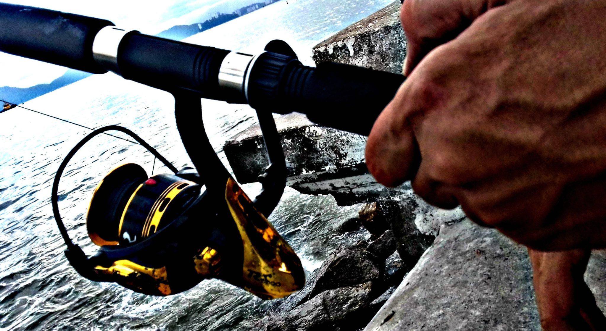 Best Saltwater Spinning Reels