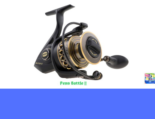 Penn Battle II Spinning Fishing Reel review