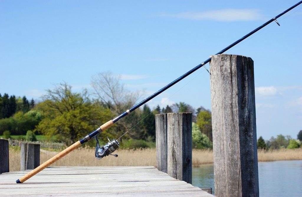 8 Best Trout Rod