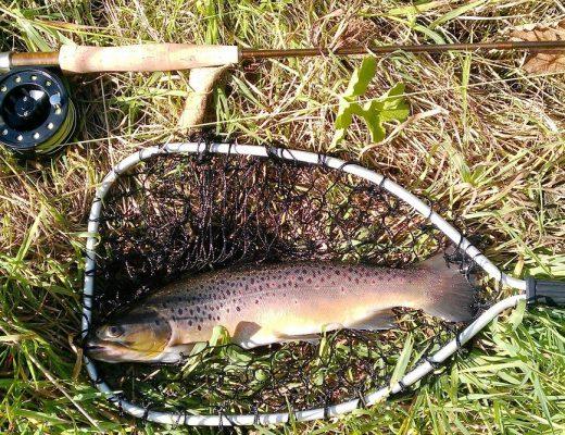 Best Trout Rod - Best Spinning Rod