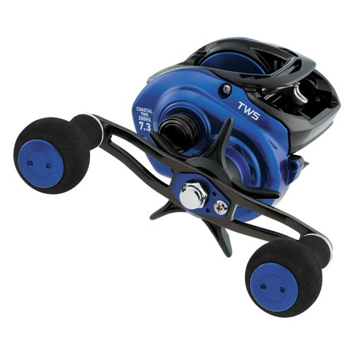 Daiwa Coastal TWS T-Wing best baitcasting Reel for saltwater