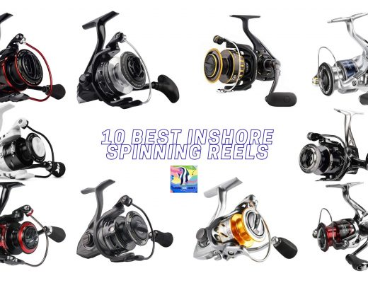 10 Best Inshore Spinning Reels