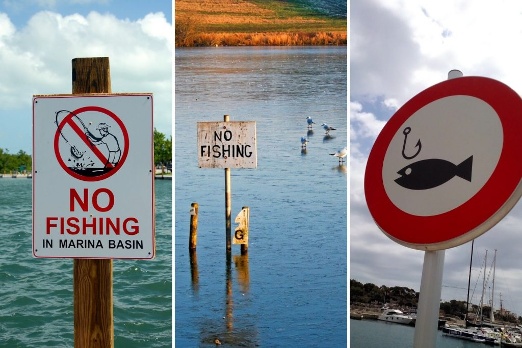 Trout Fishing Rules