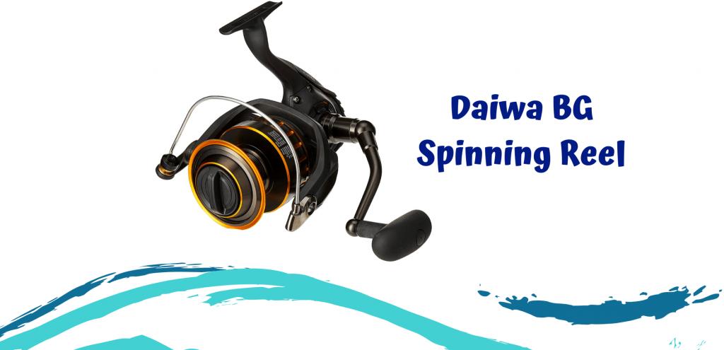 Daiwa BG Spinning Reel Review- Fishing For Sport