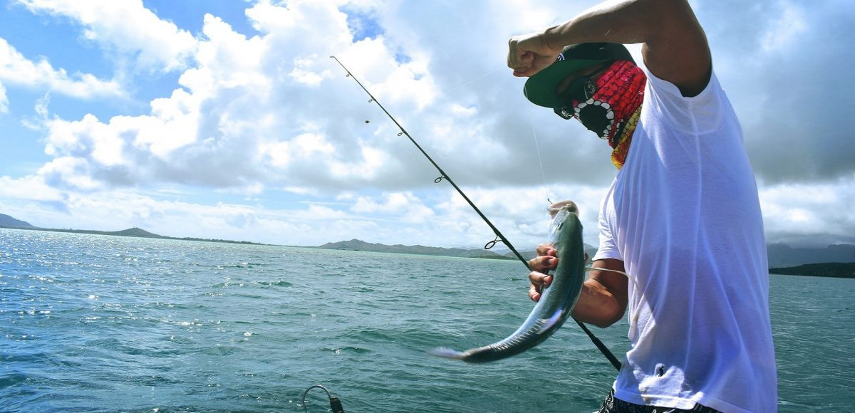Is fishing a sport ? Explained