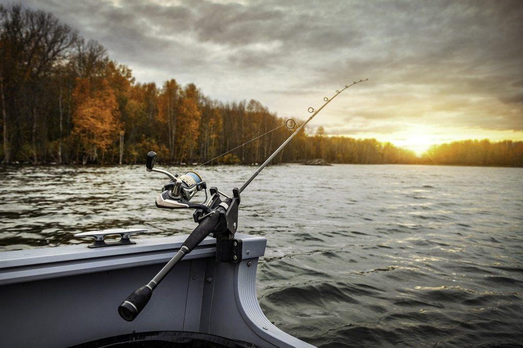 KastKing PerigeeKastKing Perigee II Review Fishing For Sport