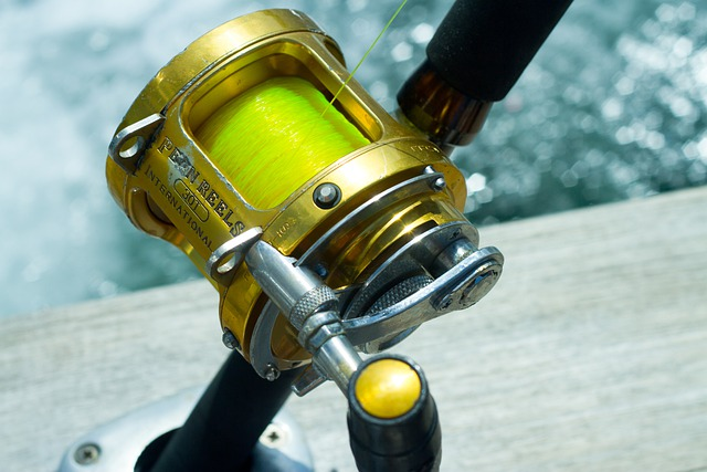 fishing reel by fishing for sport